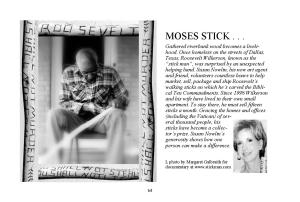 Walking Sticks...page 64 MOSES stick